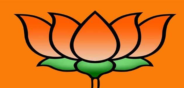 BJP seeks nod to sell onions at subsidised rates in Delhi