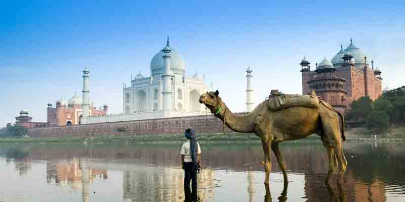 Polluted Yamuna besides Taj Mahal in Agra